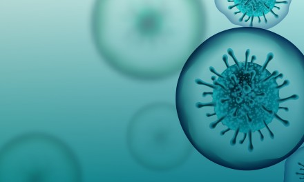 Panter: Jetzt auf die Pandemiebremse steigen