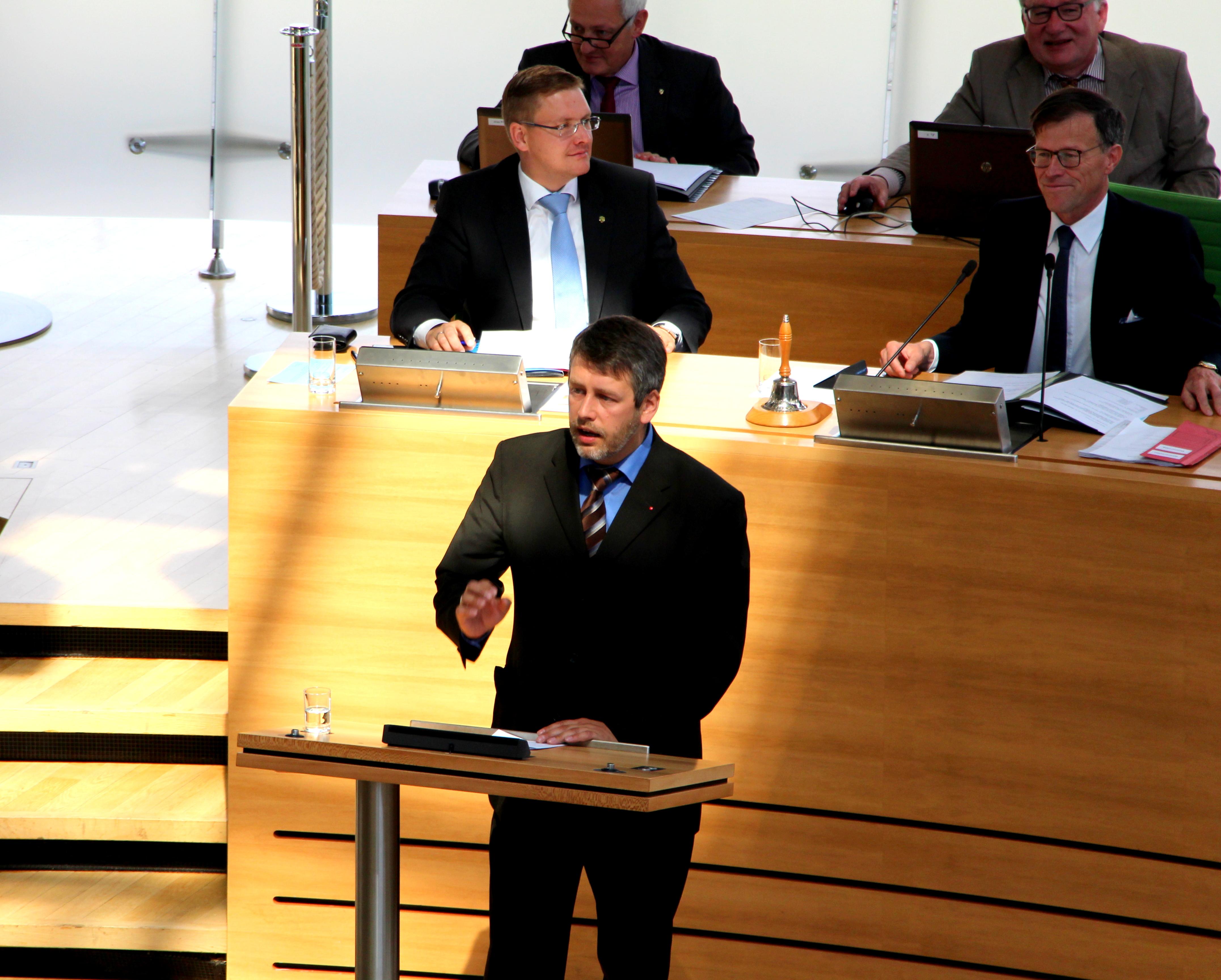 Pallas: Parlament und Regierung können und werden Herausforderungen annehmen und bewältigen