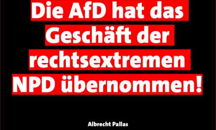 Pallas: AfD hat das Geschäft der rechtsextremen NPD übernommen