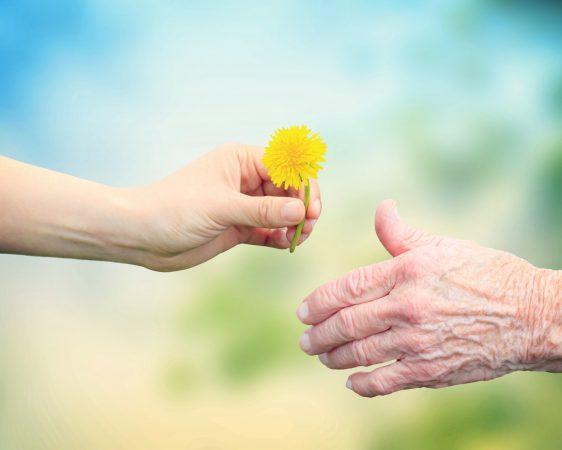 Pflege: Zu Hause in Würde altern. wie kann das gehen? @ Kleinkunstbühne Q24   Pirna   Sachsen   Deutschland