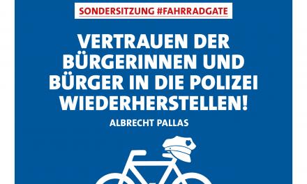 Pallas: Wir sehen weiter Aufklärungsbedarf – Vertrauen in den Rechtsstaat wiederherstellen und Korruption vorbeugen