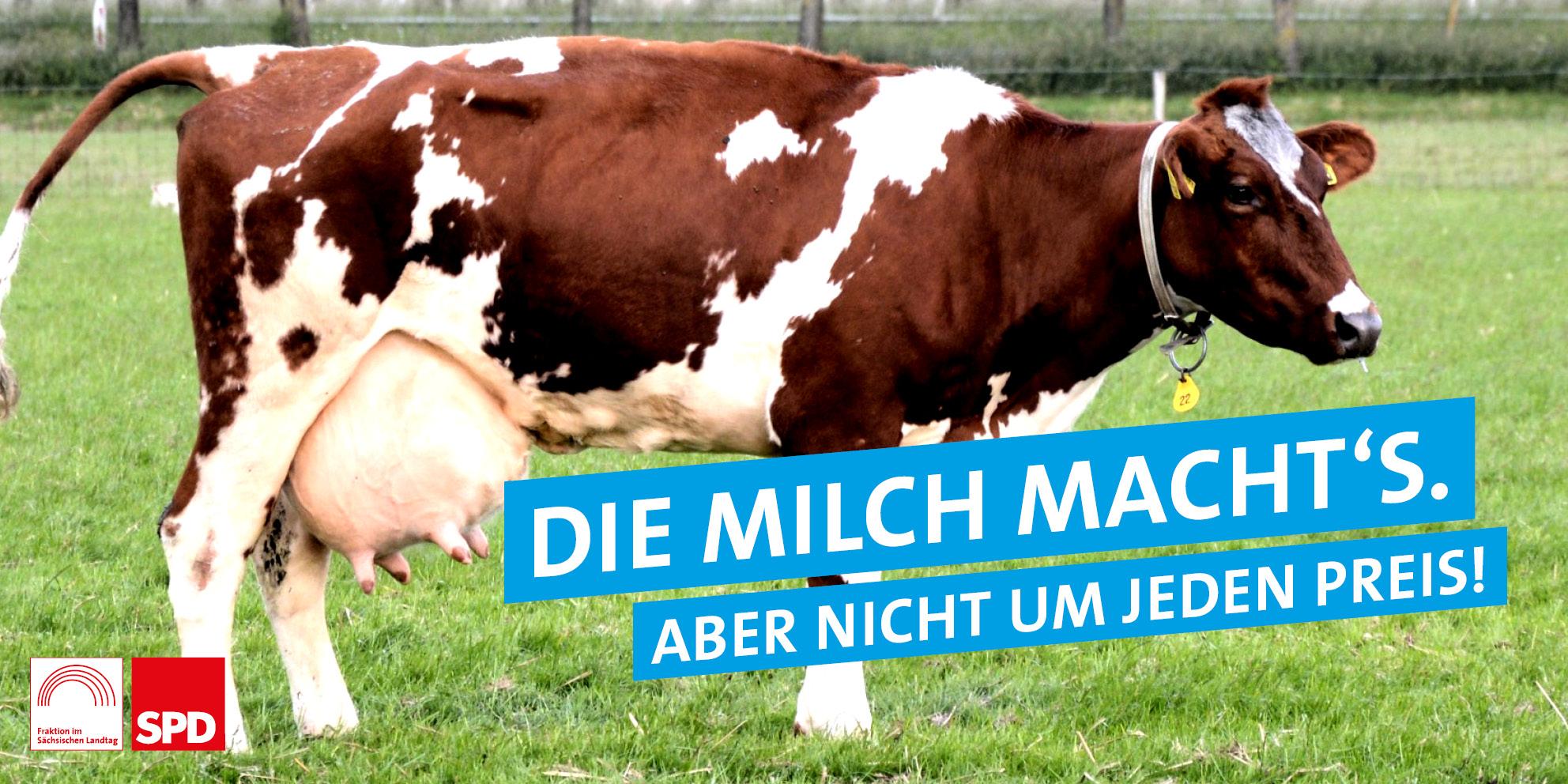 Die Milch macht's – aber nicht um jeden Preis