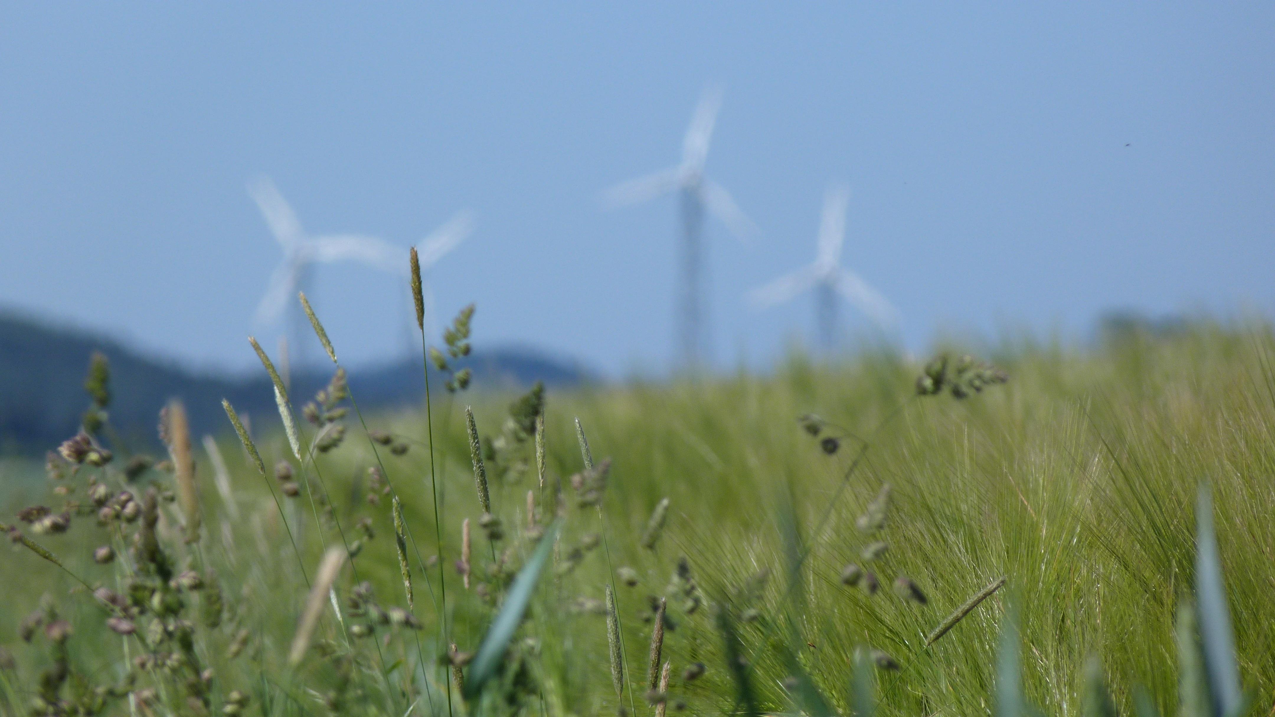 Windkraft-Erlass betont Schutz der Wohnbevölkerung